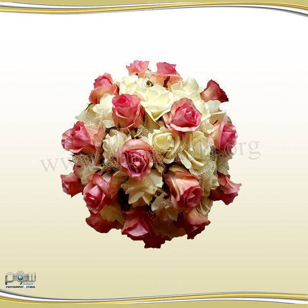 تصویر نیم توپ گل رز بزرگ