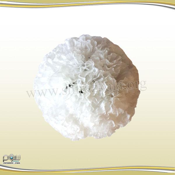 تصویر توپ گل میخک سفید بزرگ